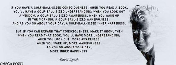 David Lynch-Expand  your awareness