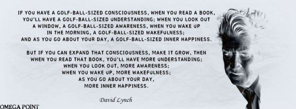 David Lynch-Expand  your awareness
