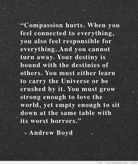Walk with the Universe-Andrew Boyd